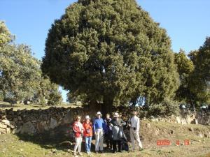 26-02-2011: Excursión a la Dehesa de Moncalvillo