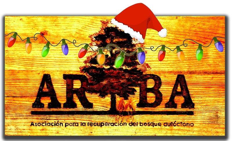 Felices Fiestas 2011 – 2012