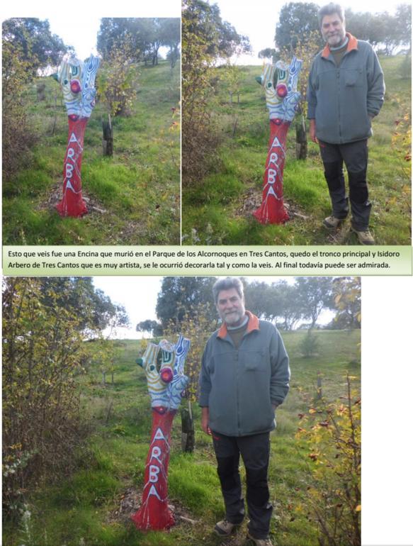 Lo que se puede hacer con el tronco de una Encina seca – Noviembre 2015