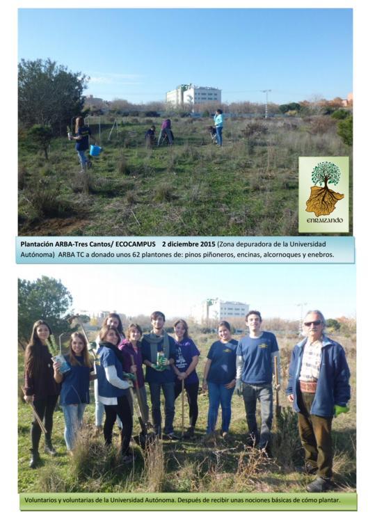 Plantación en la Universidad Autónoma – 2 Diciembre 2015