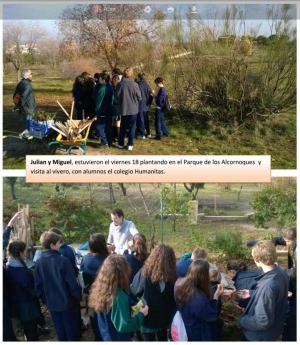 Plantación con alumnos del Colegio Humanitas – 18 Diciembre 2015