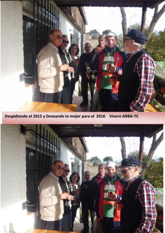 Fin de Año 2015-2016