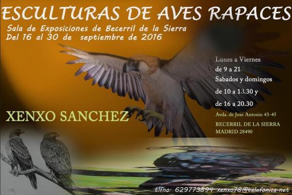 Exposición en Becerril de la Sierra