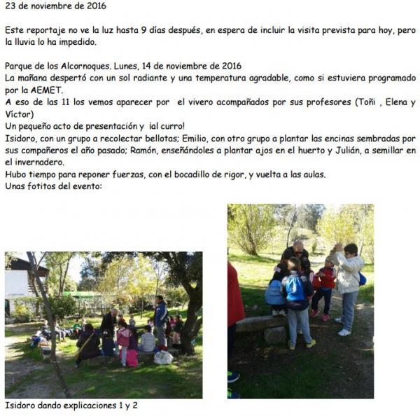 Plantación con alumnos del CEIP Antonio Osuna – 23 de Noviembre 2016