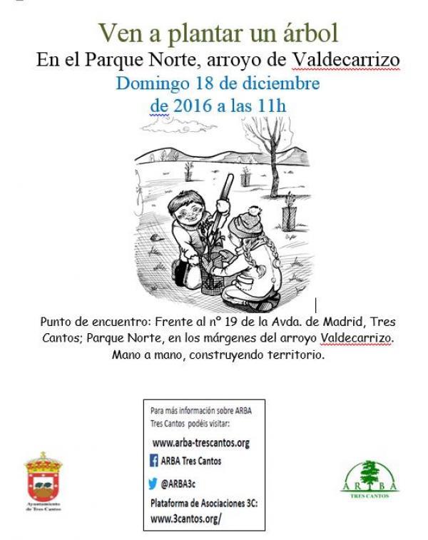 Plantación en Arroyo de Valdecarrizo – 18 Diciembre 2016