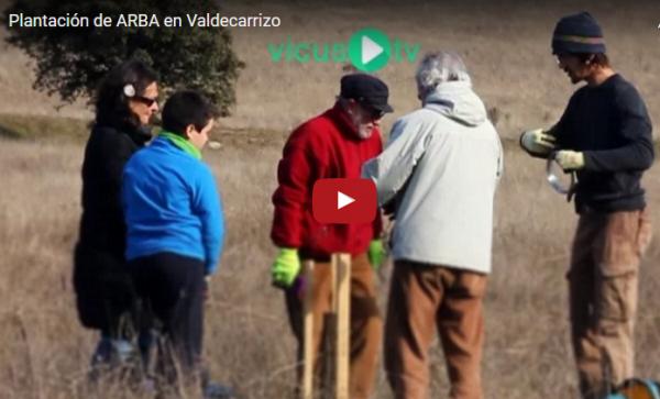 Plantación en Valdecarrizo – 21 de enero 2017