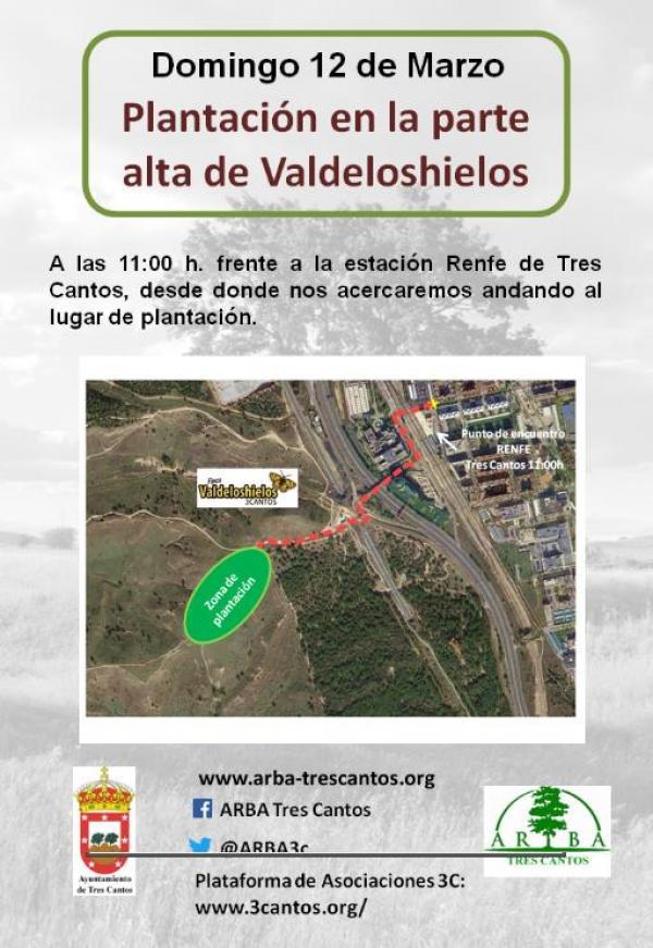 Plantación en Valdeloshielos – 12 marzo 2017